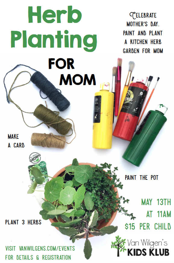 Kids Klub Herb Planting and Painting for Mom